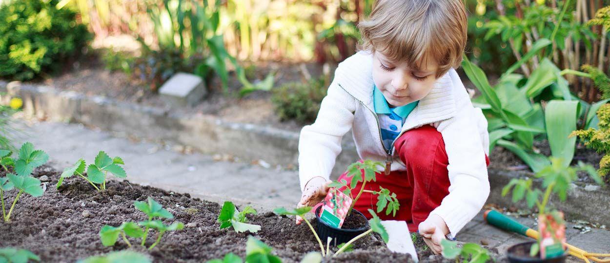 Comment Bien Jardiner Avec Son Enfant Entretenir Son