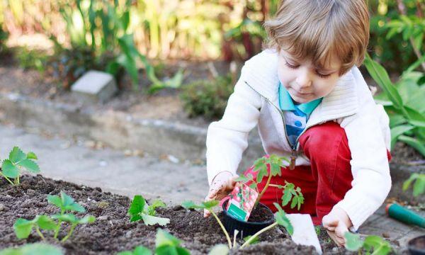 Éveil au potager : tout ce que le jardinage apporte à votre enfant