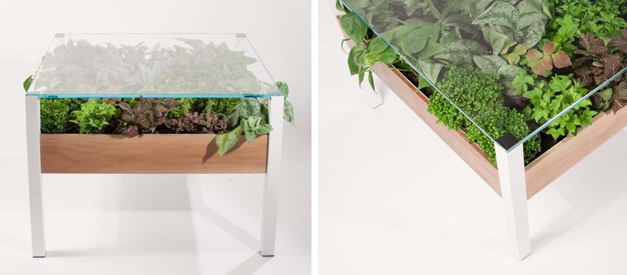The living table une table basse avec des plantes l - A poil dans son jardin ...