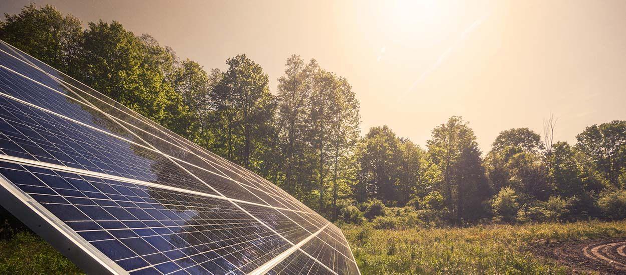 Modèle à suivre : le 1er parc solaire citoyen va voir le jour dans l'Aude