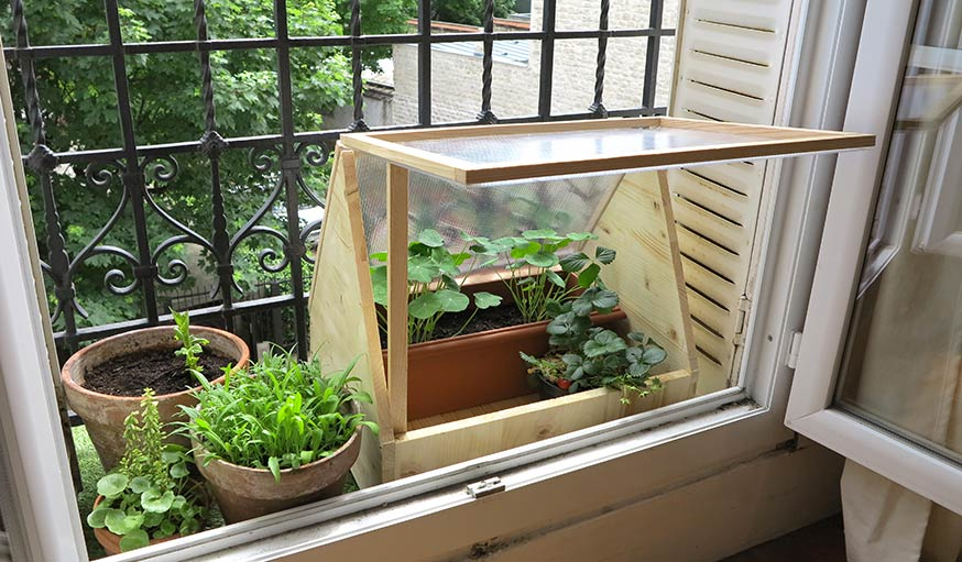 8 idées pour fabriquer une serre avec des fenêtres, en ...