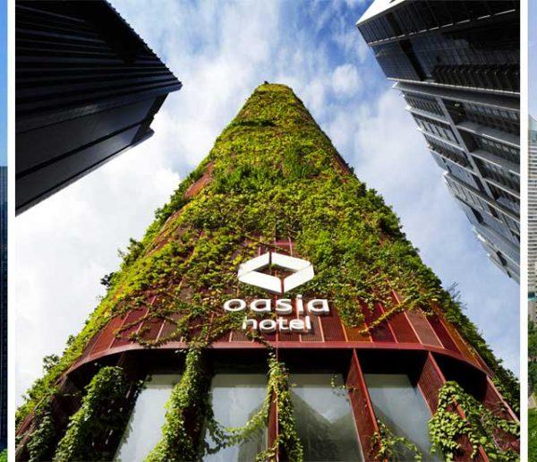 Magnifique : la végétation envahit la façade de cet hôtel de Singapour