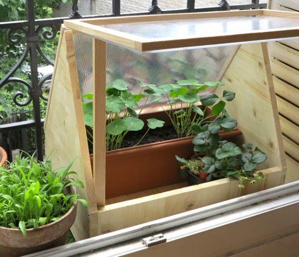 Tuto : Fabriquez une petite serre de balcon pour cultiver en ville !