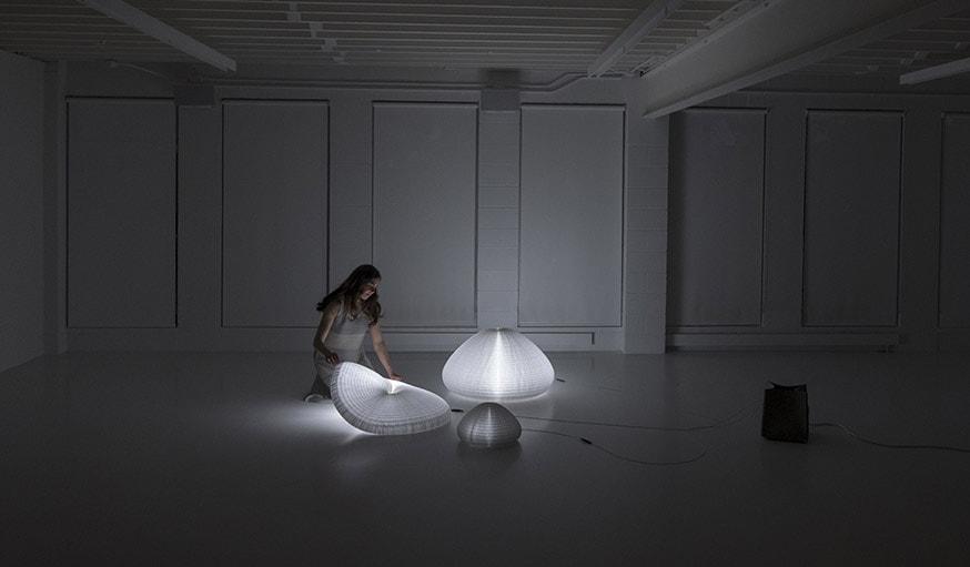 urchin softlight, de Stephanie Forsythe et Todd MacAllen.