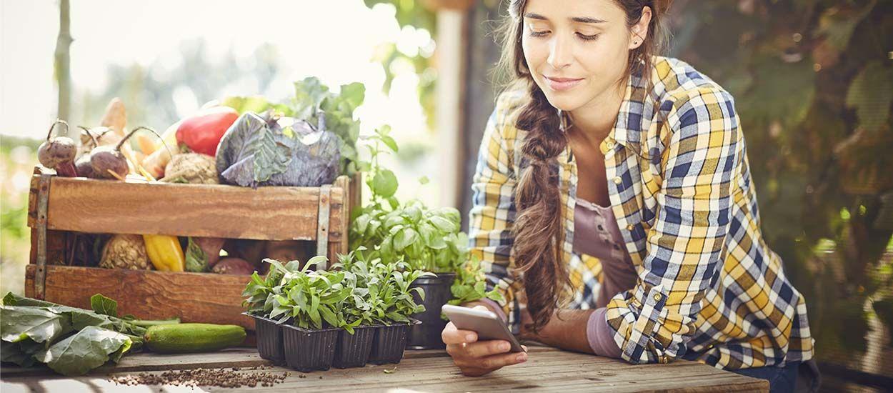 Carottes, tomates, oignons... Quels légumes font bon voisinage au potager ?