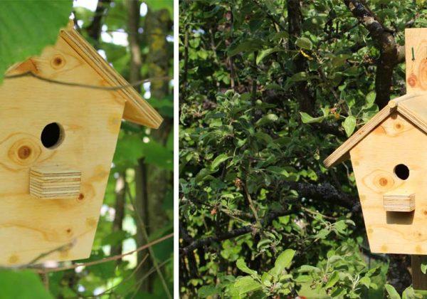 Fabriquez Un Nichoir Pour Les Oiseaux Du Jardin Diy Maison