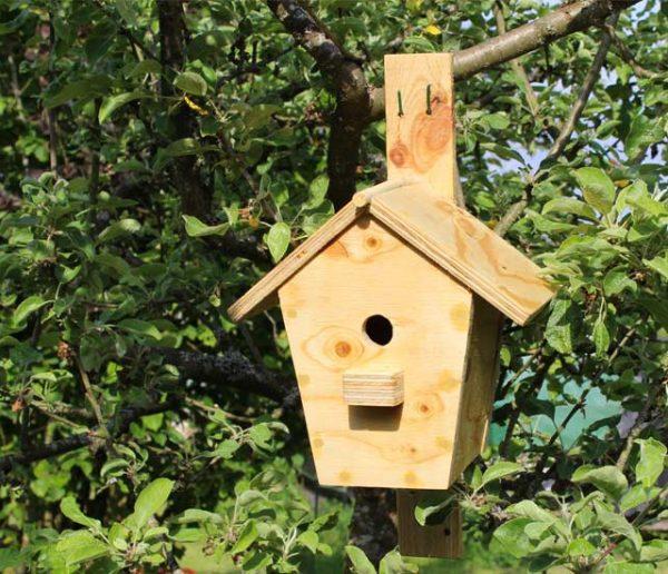 Tuto : Fabriquez une cabane à oiseaux pour 20 euros