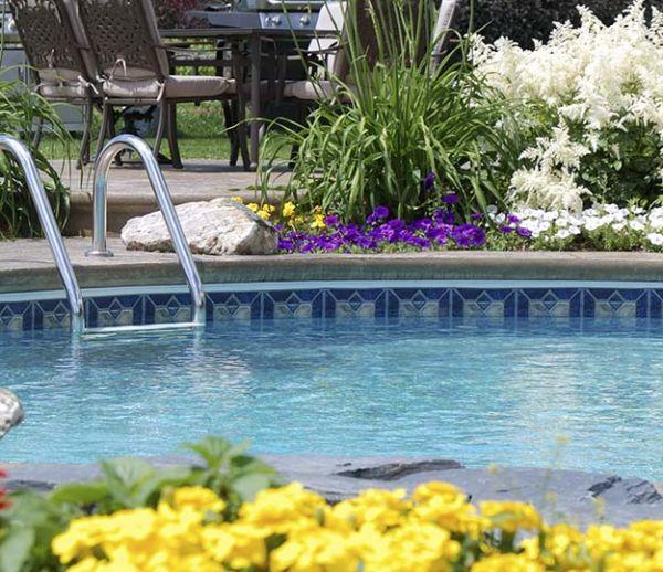 Fleurs, arbustes et succulentes : nos conseils pour une piscine aux abords verdoyants et propres