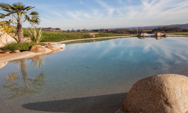 Pour une piscine plus écolo : installez un lagon dans votre jardin !