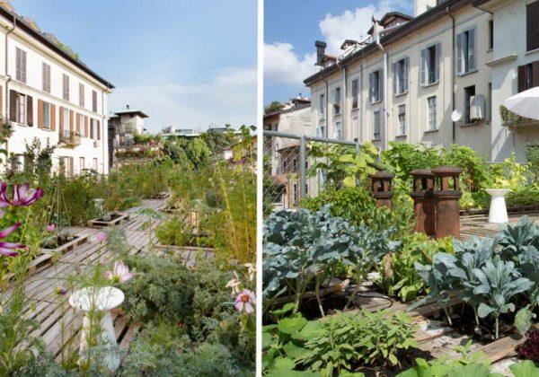 Transformer Un Toit En Terrasse Inspirez Vous Du Jardin Sur Le Toit