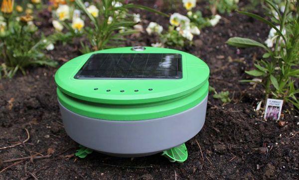 Jardin bio : ce robot sillonne votre jardin tout seul pour éliminer les mauvaises herbes