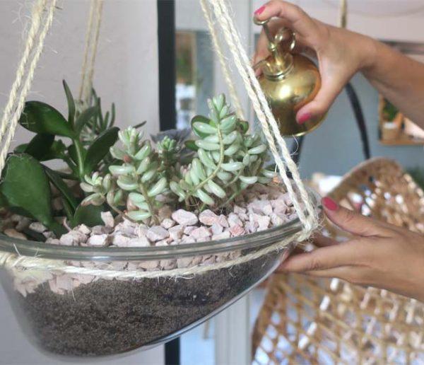 Tuto déco et récup' : Transformez un hublot de lave-linge en terrarium suspendu