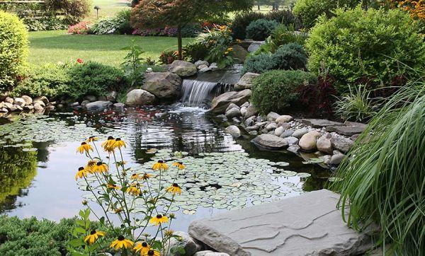 Fraîcheur au jardin : 8 bassins qui vont vous inspirer