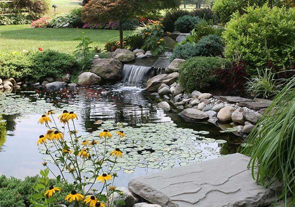 Inspirations pour installer un bassin dans son jardin ...