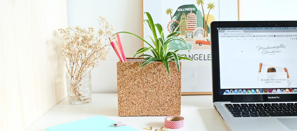 Tuto : Fabriquez un porte-crayons en liège avec sa plante verte