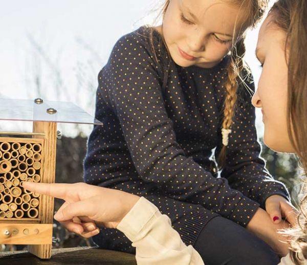 Votre prochain animal de compagnie ? Des abeilles inoffensives dans le jardin