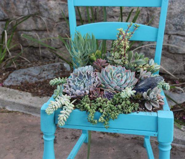 Tuto upcycling : Sublimez une vieille chaise avec des succulentes