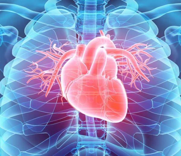 Votre cœur va bientôt remplacer vos mots de passe