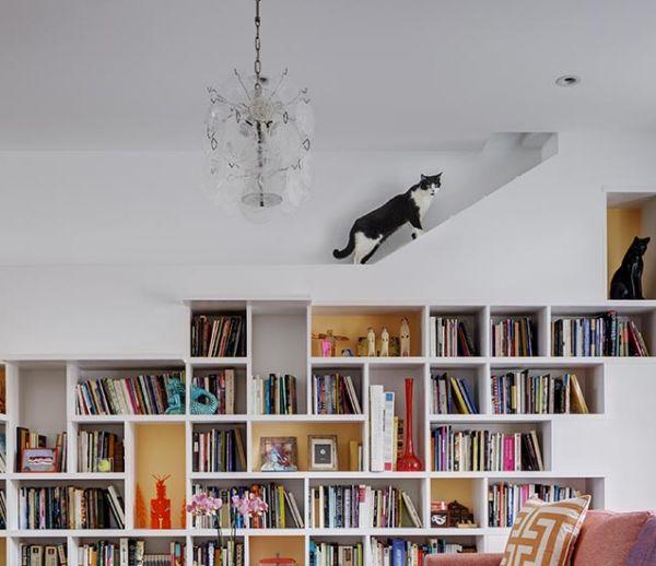 Cette maison est un paradis pour les amoureux de livres et de chats !
