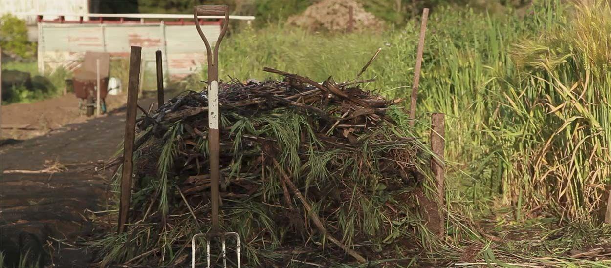 Conseils de pro pour fabriquer facilement une pile de compost