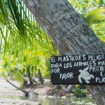 """""""Le plastique est dangereux pour les animaux marins, s'il vous plait, protégez la plage"""""""