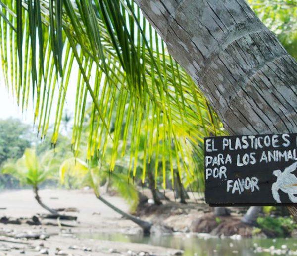 Gobelets, assiettes, couverts... Le plastique va disparaître au Costa Rica d'ici 2021 !