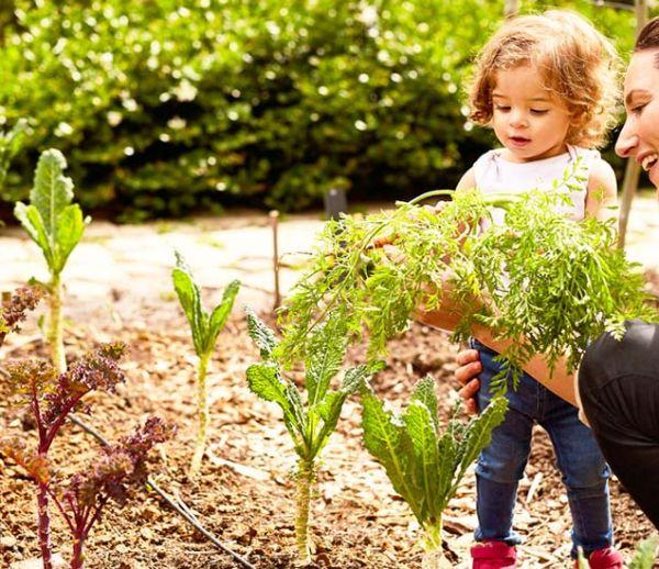 9 astuces pour cultiver un beau jardin en restant écolo !