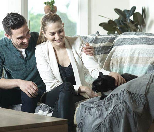 Cette litière autonettoyante va changer votre vie et celle de votre chat !
