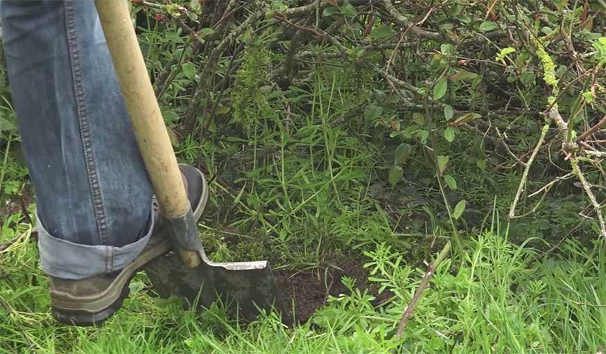 Diy abri pour h risson deux id es faciles pour fabriquer une cabane pour h risson - Abri pour herisson jardin amiens ...
