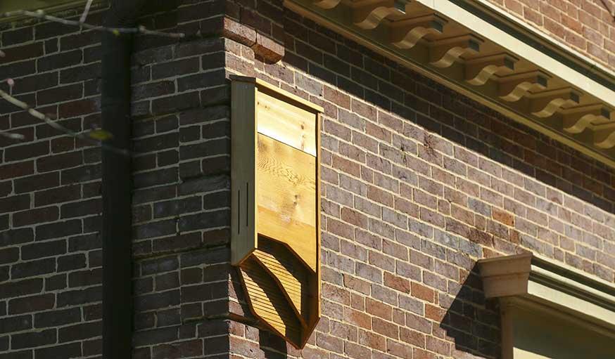 BatBnB peut être fixé sur n'importe quelle façade.