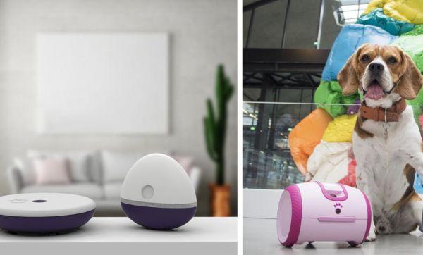 Ces objets connectés représenteront la France au plus grand salon de l'innovation du monde