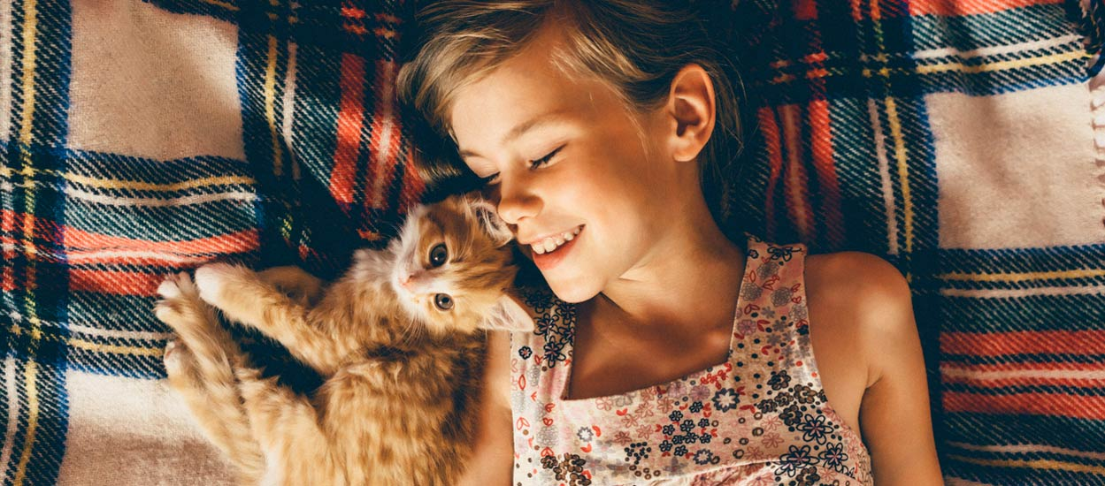 Nos conseils d'expert pour accueillir un chaton chez vous