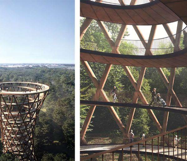 Une gigantesque spirale au sommet des arbres pour admirer la forêt d'en haut