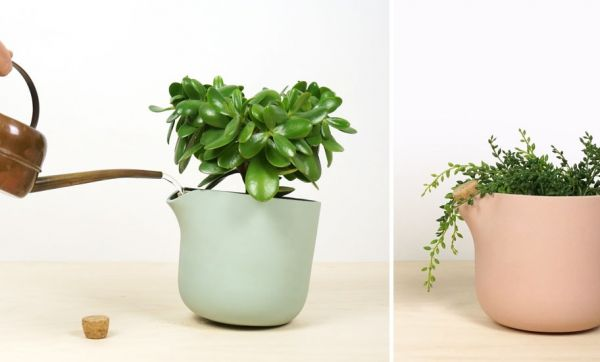 Prendre soin de ses plantes 18h39 for Prendre soin de son enfant interieur