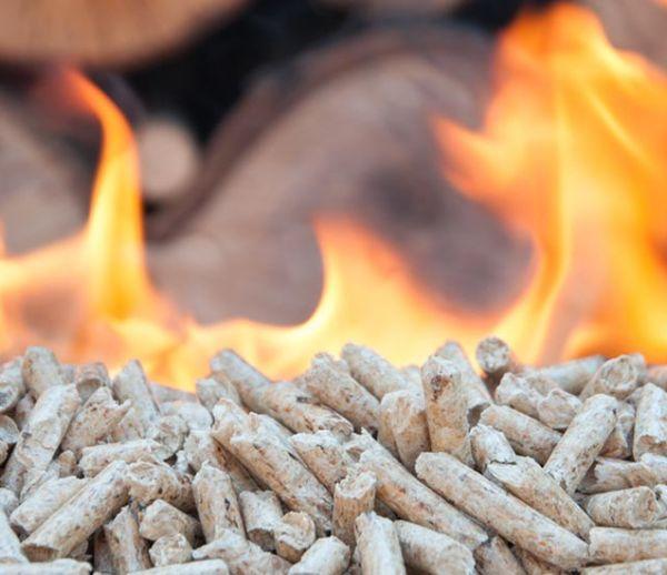 Classiques ou alternatives écolos : différents combustibles pour votre poêle à bois
