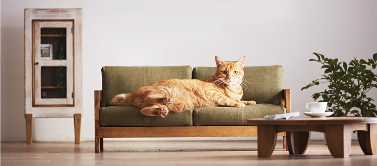 design japonais ces r pliques de meubles sont des g niaux paniers pour chats. Black Bedroom Furniture Sets. Home Design Ideas