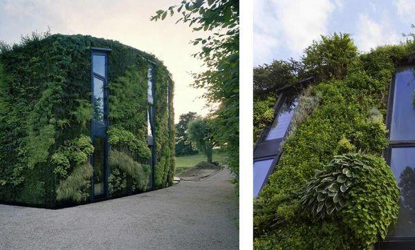 Cette maison bruxelloise est entièrement recouverte de végétaux