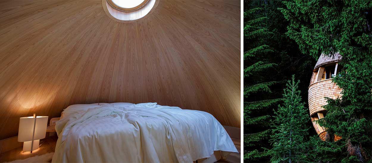 Cette magnifique cabane perdue dans la forêt offre une vue imprenable sur les étoiles