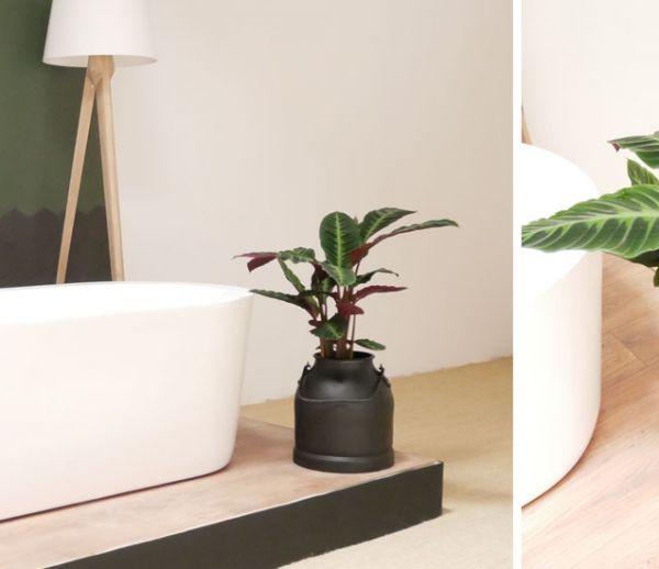 Tuto : Transformez un charmant pot à lait en joli pot de fleurs