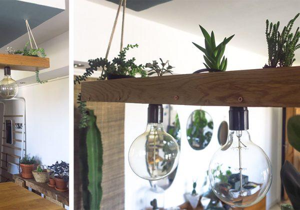 Diy 2 En 2 Luminaire Et Suspension Végétale Avec Des Plantes