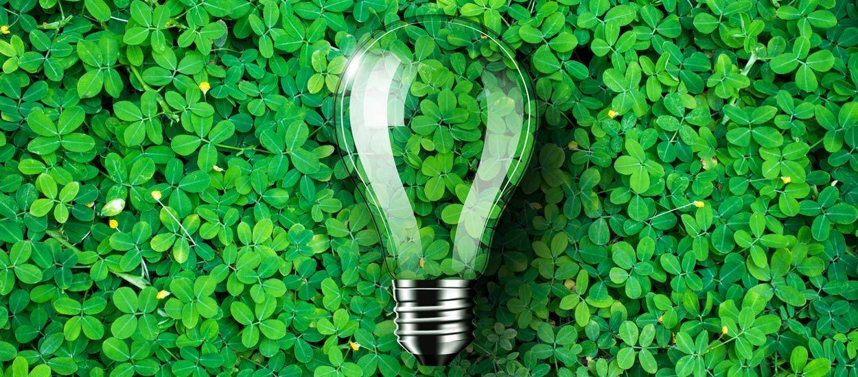 Les alternatives écolo à EDF : comment ça marche, comment choisir ?