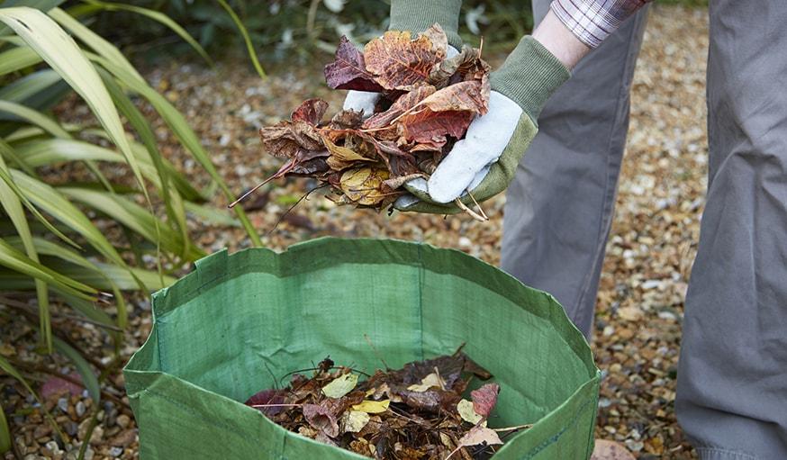 Que faire de ses feuilles en automne 5 conseils pour for Sac pour feuilles mortes