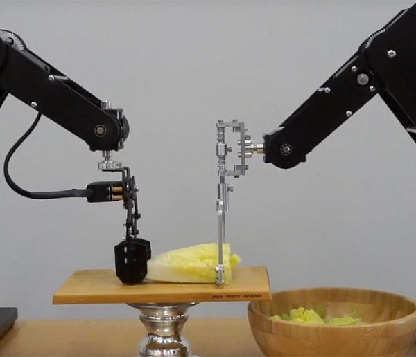 Dorna, ce robot insolite qui accomplit pour vous des tâches utiles (ou pas)