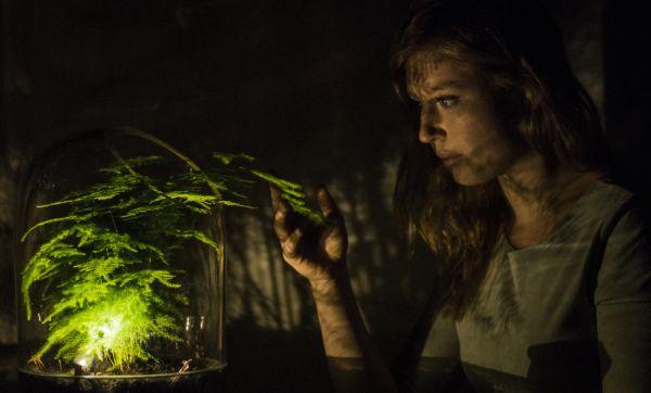 Cette lampe fonctionne grâce à l'énergie d'une plante verte