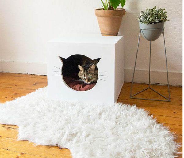 J-7 : 10 idées géniales de cadeaux à offrir à votre chat pour Noël