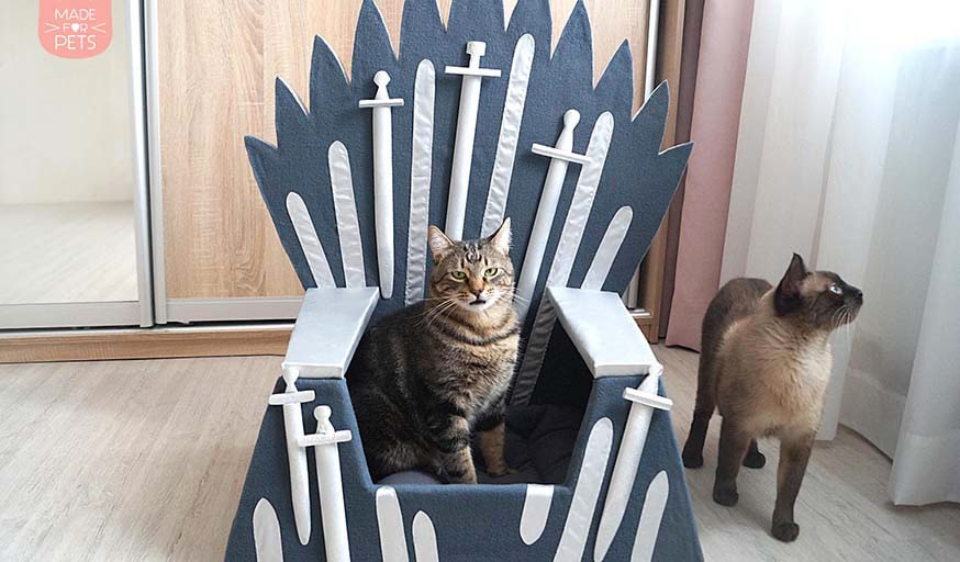 Le trone de Games of Thrones pour chat