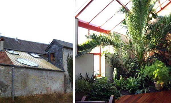 Avant / Après : ce couple du Nord a créé un jardin d'hiver aux allures de paradis tropical
