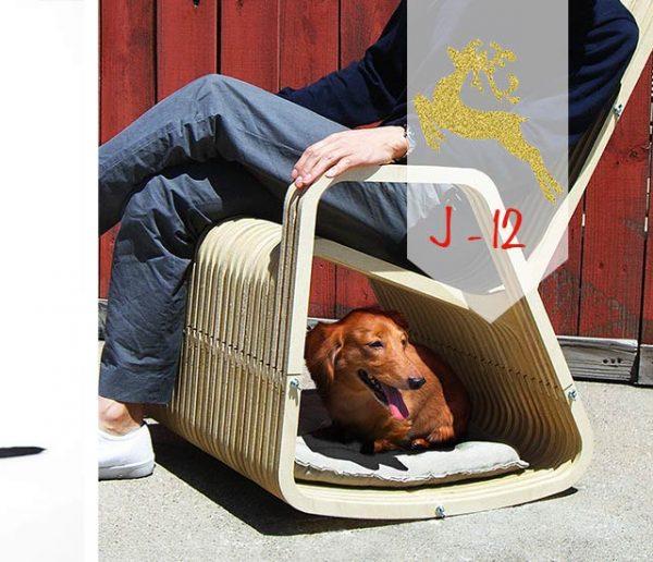 J-12 : Les meilleurs cadeaux de Noël à offrir à votre chien !