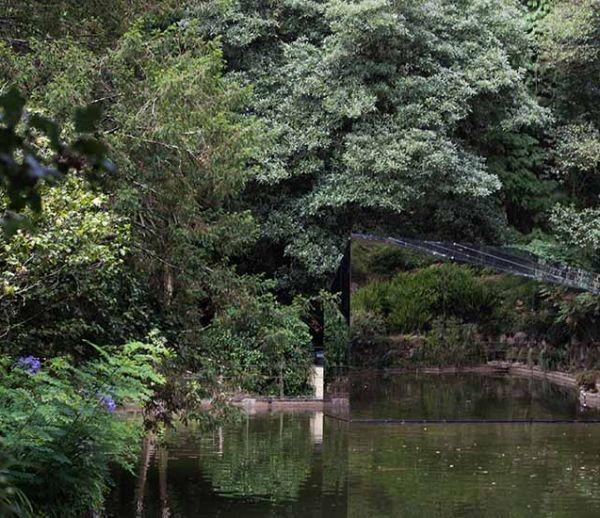Avec sa façade en miroir, ce pavillon passe inaperçu au cœur de la végétation