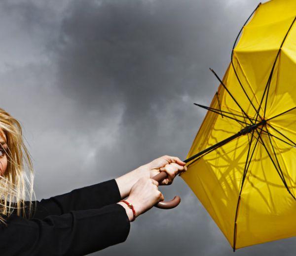Tempête : à quelles indemnisations avez-vous droit pour votre maison ?